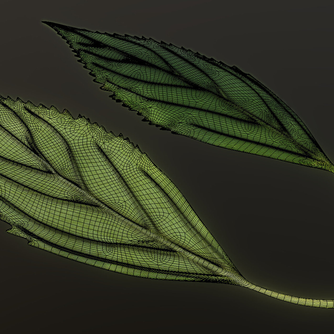Forsythia Leaves high and low-poly