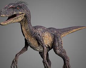 Raptor 3D