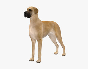 Great Dane HD 3D