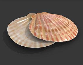 3D Sea Shell PBR