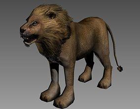 Male Lion 3D asset