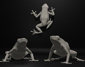 Dendrobate Auratus poison dart frog in 3 3D print model
