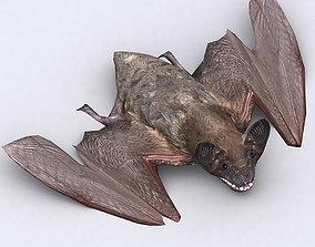 animated 3DRT - Bat