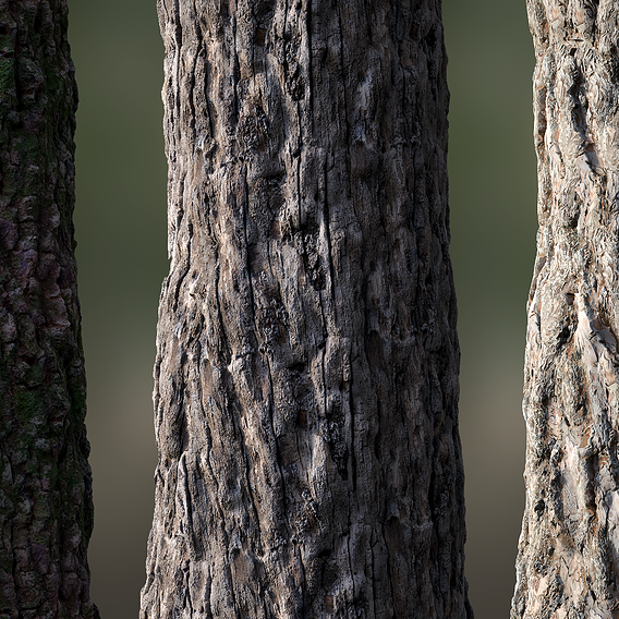 Tree Bark Seamless 02