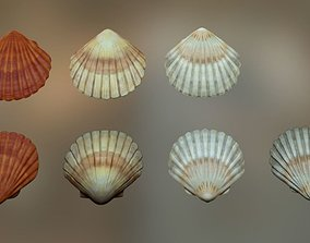 Mussel01 - 1k Triangles-Mesh and Decal 3D asset