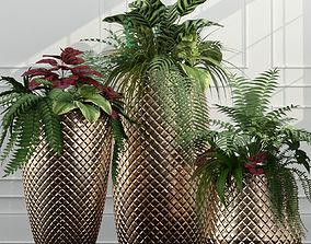 exterior 3D Room plants