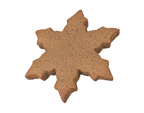 Photorealistic Gingerbread Snowflake 3D Scan