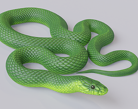 Animated Green Mamba 3D asset