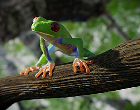 3D model rigged Red eye Tree Frog