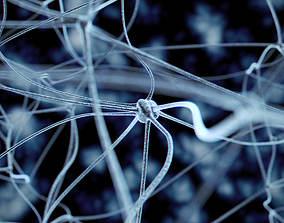 3D Neurons