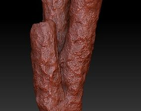 3D model Sea Coral Scan 3