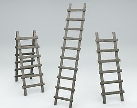 3D model Small and Tall Ladder