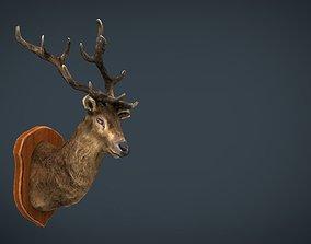3D model DEER TROPHY