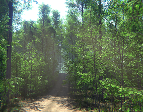 3D asset Nature Package - Forest Environment Unity