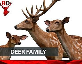 Deer Family realistic 3D asset