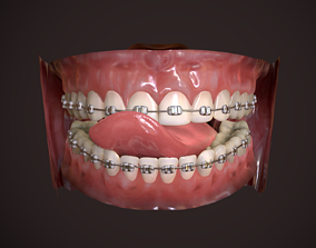 Great Teeth Collection - Mouth for character 3D asset
