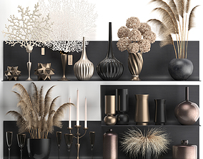 3D model Collection of decor dried flowers on a shelf