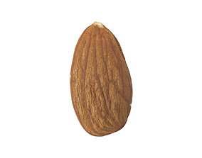 Photorealistic Almond 3D Scan