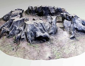 3D model Old Rotten Tree Stump Low Poly Photo Scan