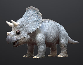 Triceratops Baby 3D Rigged model rigged