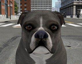 FBEX-007 Dog 3D