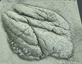 Photoscan Beach Rock 0005 only HighPoly Mesh 16K 3D