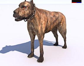 3D Vicious Dog