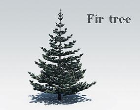 3D asset realtime Fir tree