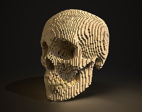 3D skull Human Skull