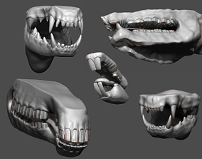 3D Animal Mouth ZBrush Sculpt Collection