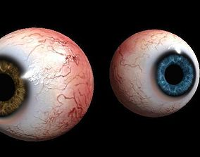 Eye Human 3D asset