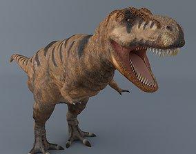 rex Tyrannosaurus Rex 3D model