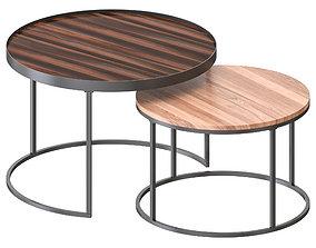 Walker Edison - Round Coffee Nesting Tables 3D model