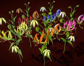 Flower Zimbabwe 3D asset