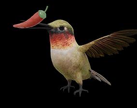 3D model Humming Bird