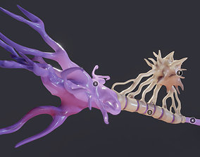 3D asset Nerve Cell Neuron And Oligo-Dendrocyte