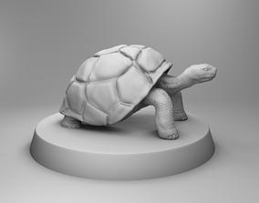 Turtle 3D printable model biology