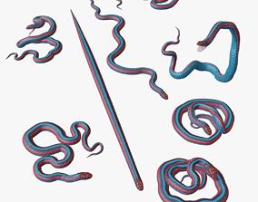 low-poly San Francisco Garter Snake - 3D Mesh