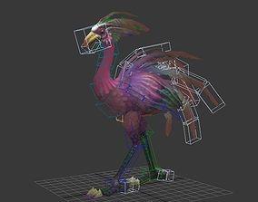 bird ostrich Turkey pheasant 3D model