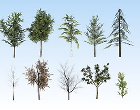 Game-ready trees pack 3D asset