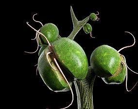 3D model Alien plant
