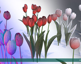 3D asset Tulips very LOW POLY detailed textures 1