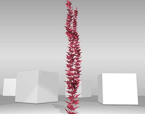 3D model Wild Wine Vine - Parthenocissus - Autumn - 1