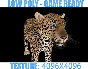 Leopard 3D asset
