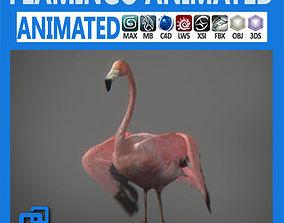 Animated Flamingo 3D model