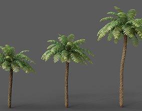 XfrogPlants Rough Treen Fern - Cyathea Australis 3D