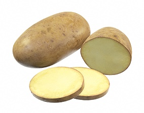 Potato whole half and slices 3D model