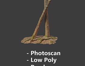 3D model Tree Trunk Stump Scanned Processed