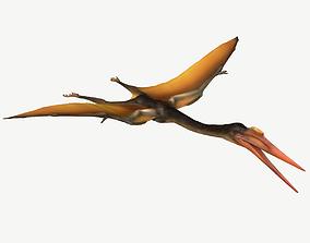 3D model Quetzalcoatlus
