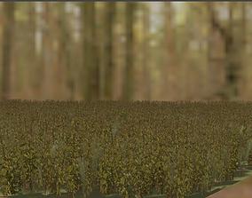 grass landscape 3D model realtime